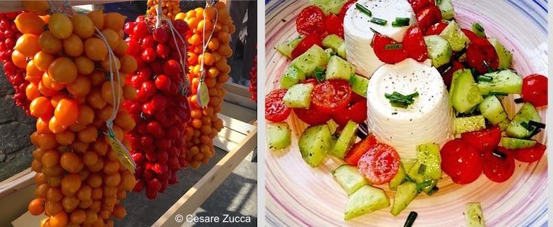 pomodorini e ricottine intervista loredana bertè